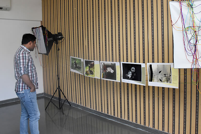 Photo Gallery2